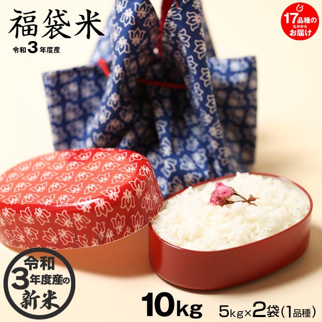 送料無料 新米 福袋米 白米 ☆☆5kg×2袋☆☆ 令和3年:滋賀県産 1品種でのお届けとなります 新入荷 流行 10kg 評価