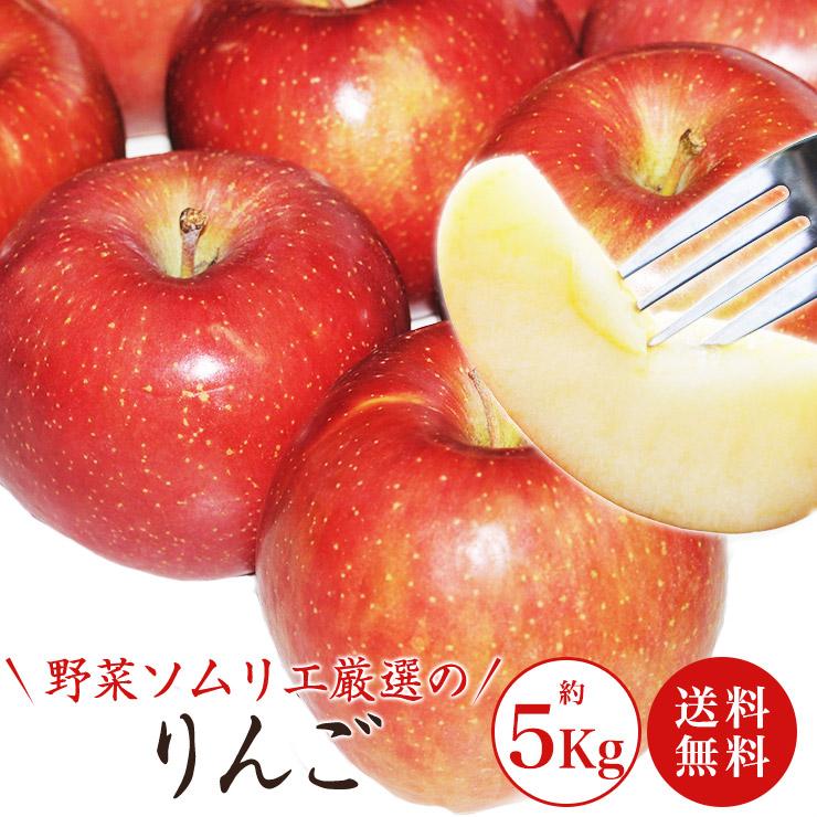 信州最高峰の生産地で育った安曇野産こだわりのりんご 送料無料 数量限定 野菜ソムリエ厳選 約5kg 14玉~20玉 安曇野産のおいしいりんご 大人気 オンラインショッピング