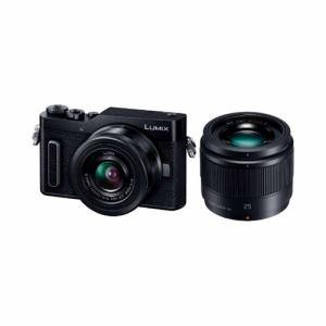 【納期約1~2週間】【お一人様1台限り】【代引き不可】DC-GF10W-K Panasonic パナソニック デジタル一眼カメラ LUMIX DC-GF10 ダブルレンズキット ブラック DCGF10WK