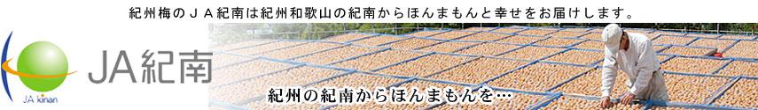 紀州梅のJA紀南:生産農家と一体となって、選りすぐりの紀州梅干とみかんをお届けします。