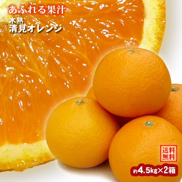 【送料無料】木熟清見オレンジ  約4.5kg(18玉入り) 2箱 ★まるで食べるオレンジジュース♪果汁たっぷり!人気のみかんです☆ムッキーちゃんプレゼント!