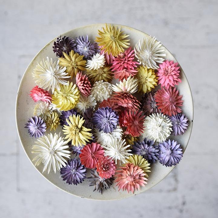 売れ筋 ドライフラワー 花材 大地農園 チーゼルフラワー 全2色 ハーバリウム 造花 資材 材料 最安値
