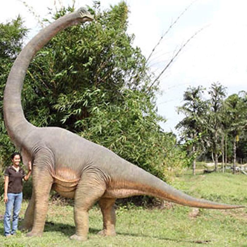 実物大 恐竜 オブジェ ブラキオサウルス インテリア イベント ディスプレイ