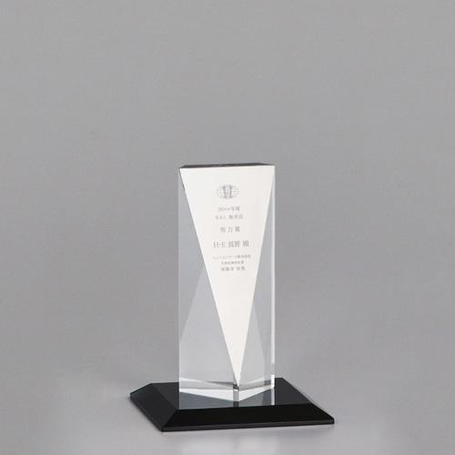 【版代別途必要】光学ガラス製トロフィー B47-02D ★高さ162mm