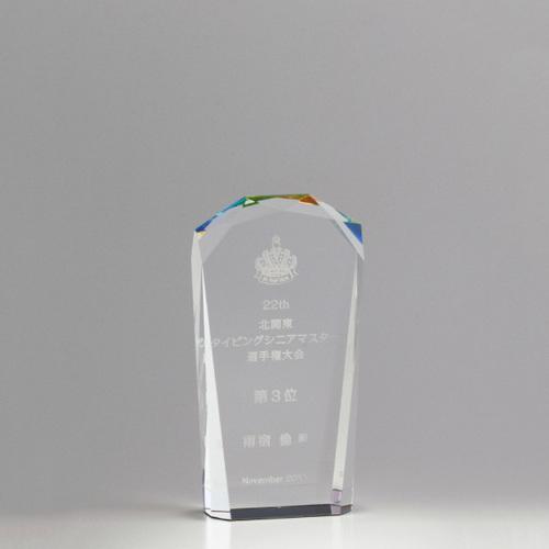 【版代別途必要】光学ガラス製オーナメント B56-01C ★高さ130mm