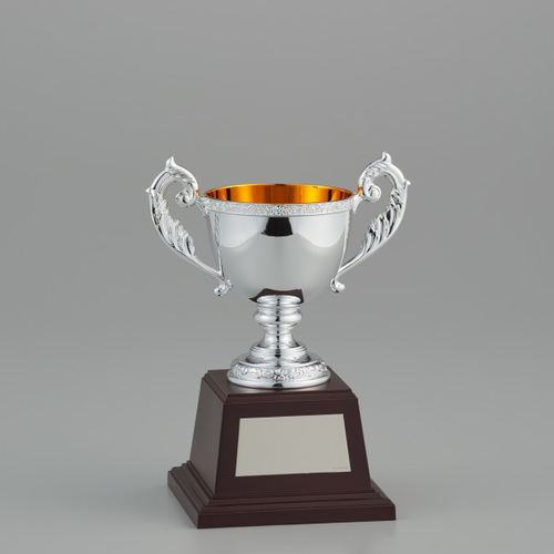 優勝カップシルバーカップ NO-2527C ★高さ210mm 《BS13》
