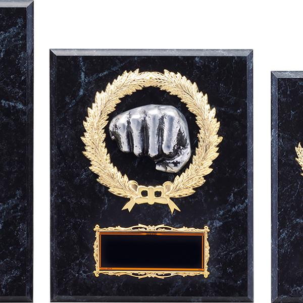 表彰楯(空手) K-1158B ★高さ255mm《H-5》 プレート彫刻無料