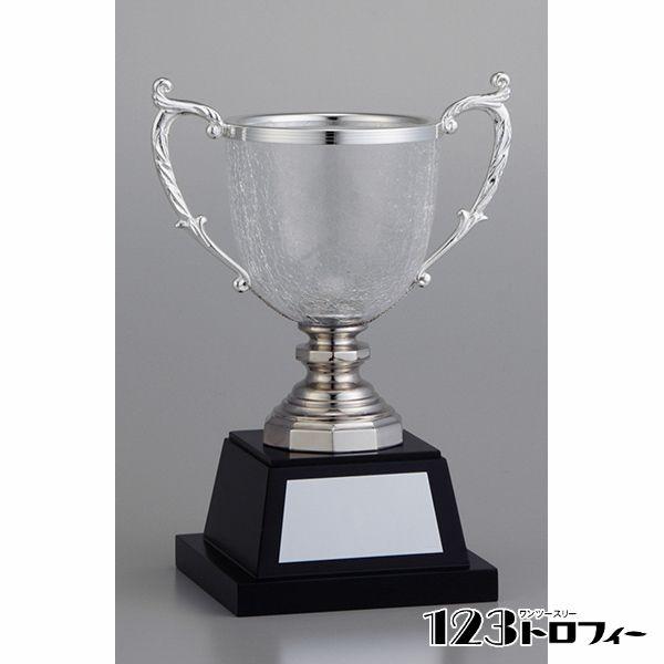 クリスタルカップ YC-2910A ★高さ290mm 《BS11》