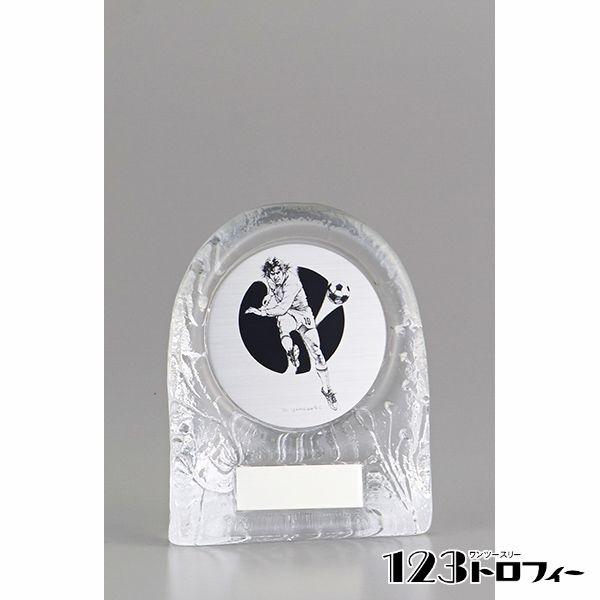 フリーセレクション表彰楯(表彰盾) YCZ-2954B ★高さ150mm 《SO-108》