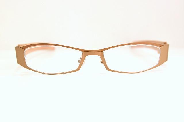 Less than human( レスザンヒューマン)F.A.G-S.CUM col.9610メガネフレーム新品めがね眼鏡サングラス革張り