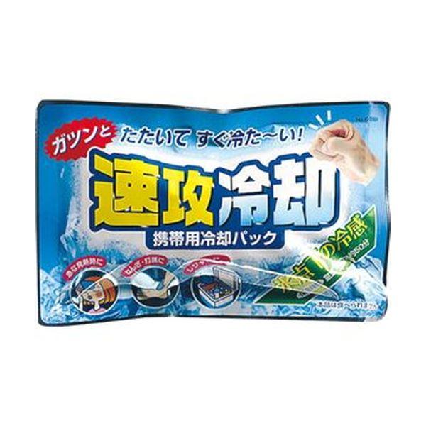(まとめ)紀陽除虫菊 携帯用冷却パック 速攻冷却K-2001 1セット(10個)【×10セット】