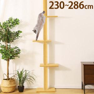 猫タワー 爪研ぎ つめとぎ ねこ 猫 ネコ 猫用 キャットハウス 猫おもちゃ 木登り タワー キャット ステップ  【先着順 5%OFFクーポンあり★10月1日限定】 キャットタワー 突っ張り スリム 省スペース 高さ230~286cm 突っ張りキャットタワー キャットステップ キャットウォーク 突っ張り式 突っぱり キャットツリー 送料無料 yu
