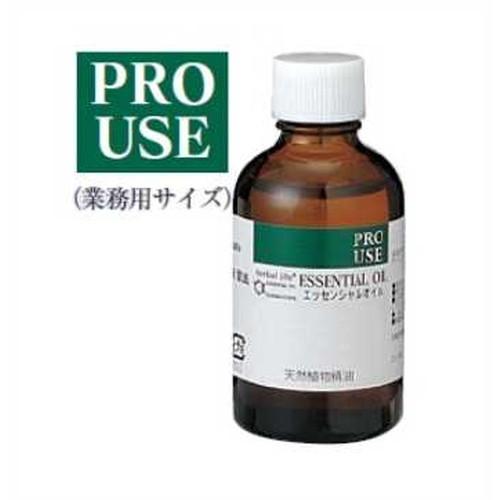 【PRO USE】【受注生産】ハーバルライフエッセンシャルオイル アンジェリカ精油 50ml 生活の木