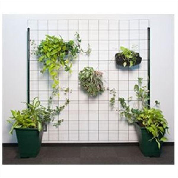 近江屋ロープ カラマリーナVG-Gリトルワイド /グリーンパネル 『緑化 バラ用フェンス 柵』