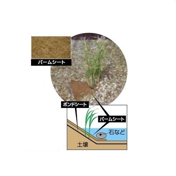 グローベン ナチュラルストリームガーデン用追加オプション パームシートキット (大) C30TP052