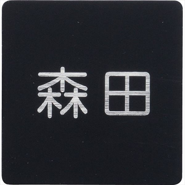 ユニソン デコサイン ワぺ スタンダード 120×45 レイアウトA  文字色:ヘアライン  『表札 サイン 戸建』