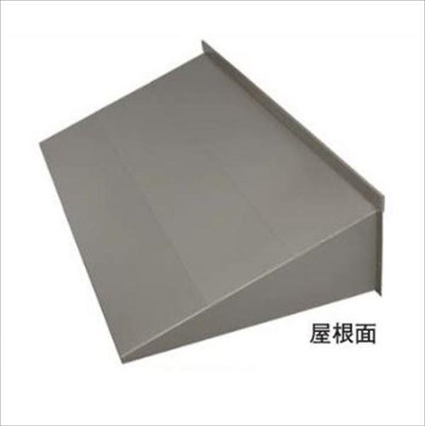 岩井工業所 アプローチ 本体1000 ガルバリウム鋼板製 1000×2100 『ひさし』
