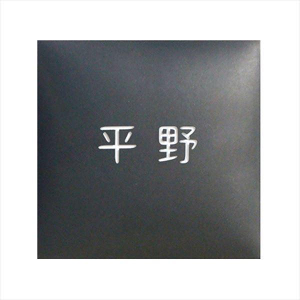オンリーワン ラウンドスクエア表札 漢字のみ KZ1-145BNK 『表札 サイン 戸建』