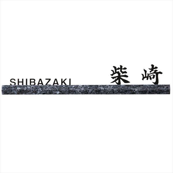 福彫 スタイリッシュライン ブルーパール&ステンレス切文字  DK-205K『表札 サイン 戸建』