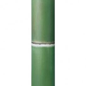 『人工植栽』 タカショー グリーンデコ和風 アル銘竹 孟宗若竹(装飾用) 径80・4m #62988600