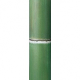 『人工植栽』 タカショー グリーンデコ和風 アル銘竹 孟宗若竹(装飾用) 径90・4m #62989300