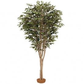 『人工植栽』 タカショー 大型人工樹 ベンジャミン 鉢無 2.2m GD-163