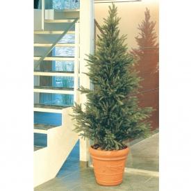 『人工植栽』 タカショー グリーンデコ鉢付 モミツリー 2.1m GD-153M
