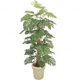 『人工植栽』 タカショー グリーンデコ鉢付 モンステラ 1.8m GD-146