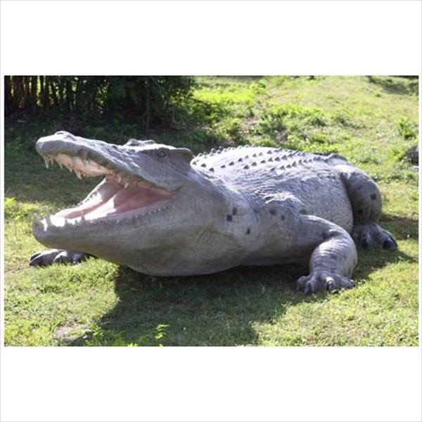 FRP 巨大クロコダイル / Crocodile 28ft 『動物園オブジェ アニマルオブジェ 店舗・ホテル向け』