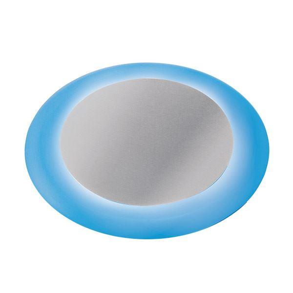 タカショー グランドライト(ローボルト) リングフラットライト HCD-B01S ●61899600 ※LED交換不可 【エクステリア照明 ライト】 LED色:青