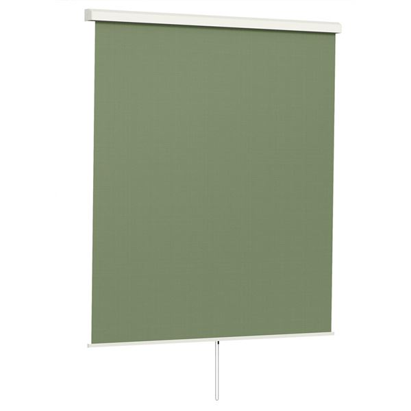 LIXIL スタイルシェード 基本セット テラス桁付 手すり固定タイプ 1枚仕様 テラス間口:3.0間 本体 H2110mm×W1670×3mm 15020  ナチュラルグリーン ナチュラルグリーン