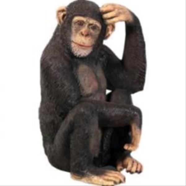 FRP チンパンジー / Chimpanzee 『動物園オブジェ アニマルオブジェ 店舗・イベント向け』