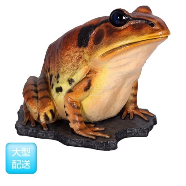 FRP 巨大な縞足ガエル / Great Barred Frog 『カエルオブジェ アニマルオブジェ 店舗・イベント向け』