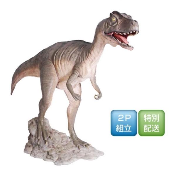送料無料【FRP】背の高い男性のような高さから大きな口を開けて威嚇する顔は恐怖! FRP 口を大きく開けるアロサウルス / Allosaurus Mouth Open 『恐竜オブジェ 博物館オブジェ 店舗・イベント向け』