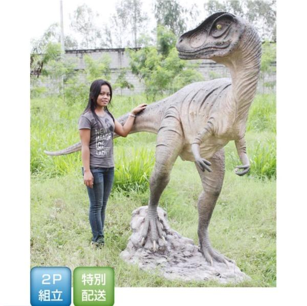 FRP 振り向くアロサウルス / Allosaurus 『恐竜オブジェ 博物館オブジェ 店舗・イベント向け』