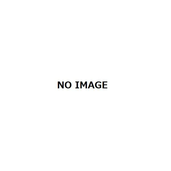 リクシル ロイヤル手すり2 雨戸用ポールセット H13用(1618mm) HBAAFA□Z00016
