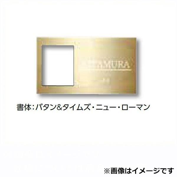 タカショー De-signシリーズ De-sign メタル インターホンカバータイプ2 100V  DSK-P03 ステンレス鏡面  『表札 サイン 戸建』