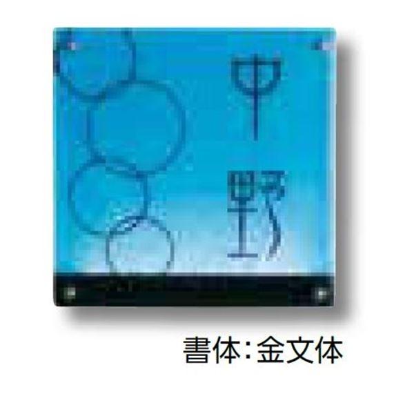 タカショー De-signシリーズ ガラスサイン ガラスブルー 12V  DREG-18   『表札 サイン 戸建』