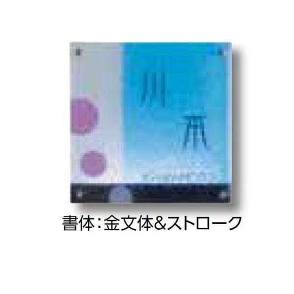 タカショー De-signシリーズ ガラスサイン ガラスブルー ピンク ベーシック(非電照タイプ)  DREG-19   『表札 サイン 戸建』