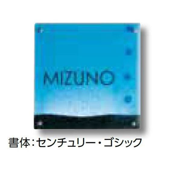 タカショー De-signシリーズ ガラスサイン ガラスブルー ドット 100V  DREG-14   『表札 サイン 戸建』