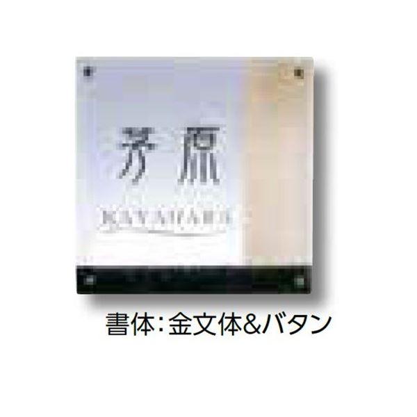 タカショー De-signシリーズ ガラスサイン ガラスクリア イエロー 12V  DREG-08   『表札 サイン 戸建』