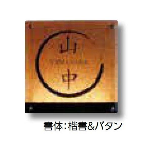 タカショー De-signシリーズ ガラスサイン ガラスブラウン 12V  DREG-02   『表札 サイン 戸建』