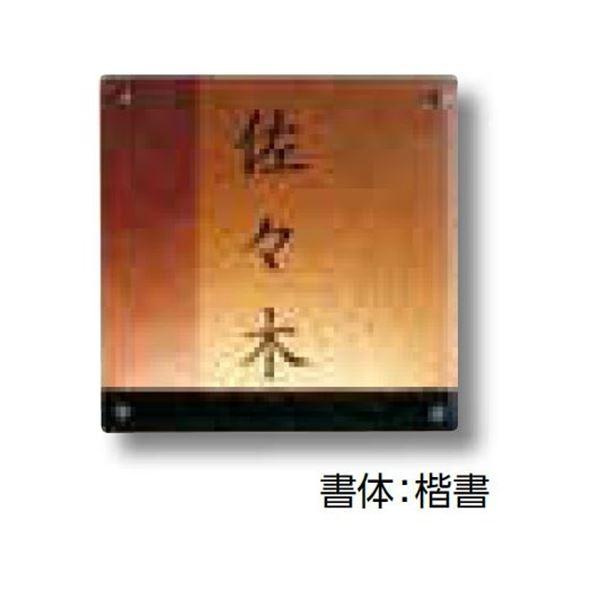 タカショー De-signシリーズ ガラスサイン ガラスブラウン 紫 ベーシック(非電照タイプ)  DREG-09   『表札 サイン 戸建』