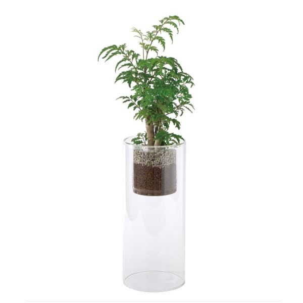スパイス ラボガラス シリンダー 観葉 植え込み ハイドロボール Lサイズ 2個セット #MUG17017