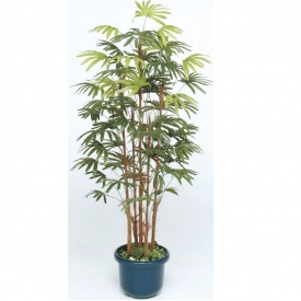 鉢付 1.5m タカショー グリーンデコ和風 『人工植栽』 #21552200 GD-127S シュロチク5本立