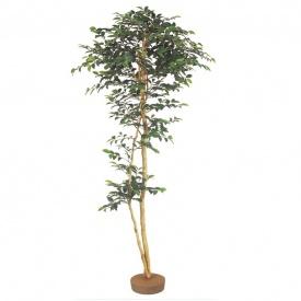 『人工植栽』 タカショー グリーンデコ和風 サザンカ 鉢無 1.8m GD-135 #21639000