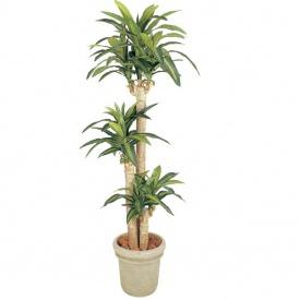 『人工植栽』 タカショー グリーンデコ鉢付 ドラセナ 幸福の木 1.7m GD-149