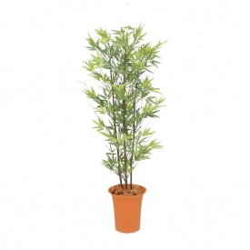 GD-169 『人工植栽』 グリーンデコ鉢付 タカショー 1.2m 黒竹