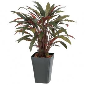 『人工植栽』 グリーンデコ鉢付 GD-164R レッド 0.9m カラテアR タカショー