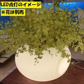 [個人宅配送不可] スイコー 回転成形型耐候ポリエチレンプランター アリエッタ Coccolo(コッコロ)+LED 9号鉢タイプ ナチュラル+LED